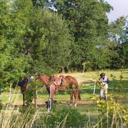 Halte chevaux
